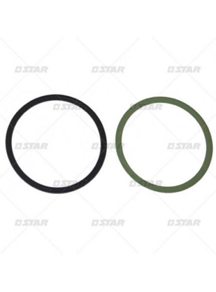 Комплект уплотнительных колец  F00HN37454 Mercedes