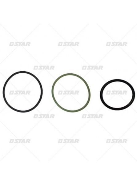 Комплект уплотнительных колец F00VX99892 DAF XF